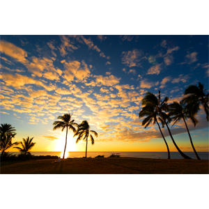 Hawaiian Radiance