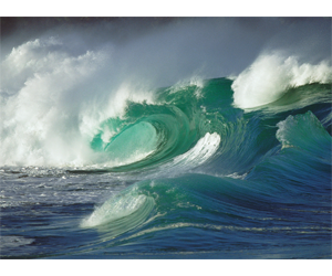 Wave Sculptures
