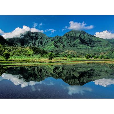 Hanalei Mountain Reflection